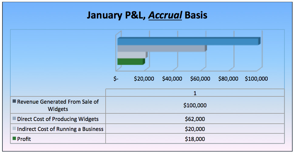 January P&L Accrual Basis