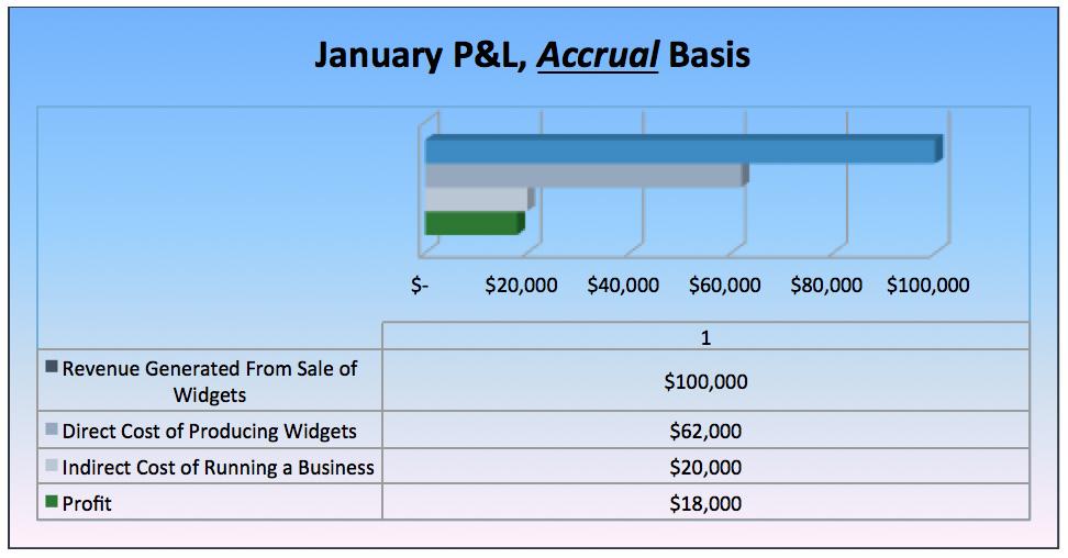 January P&L Accrual Basis